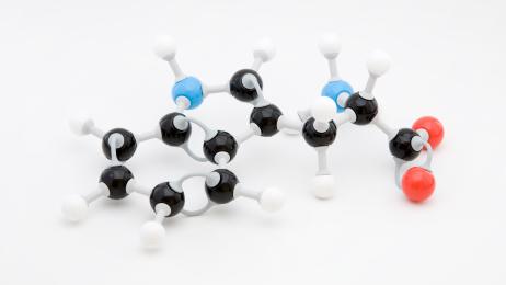 Aminosäure L-Tryptophan