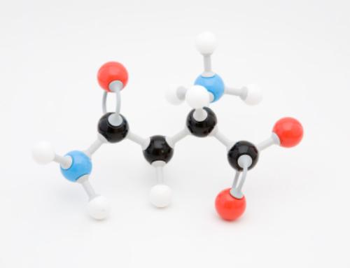 Die Aminosäure im Spargel – Asparaginsäure