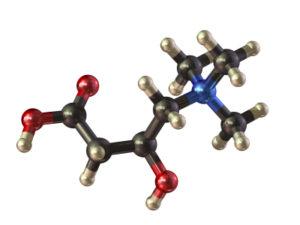 Aminosäure L-Carnitin - Bei Diät zur Unterstützung des Abnehmen