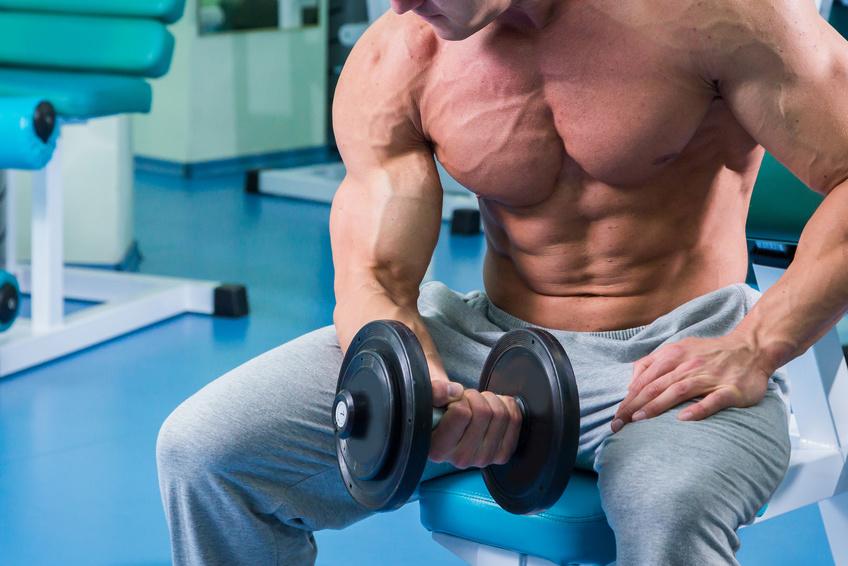 L-Alanin Muskelaufbau