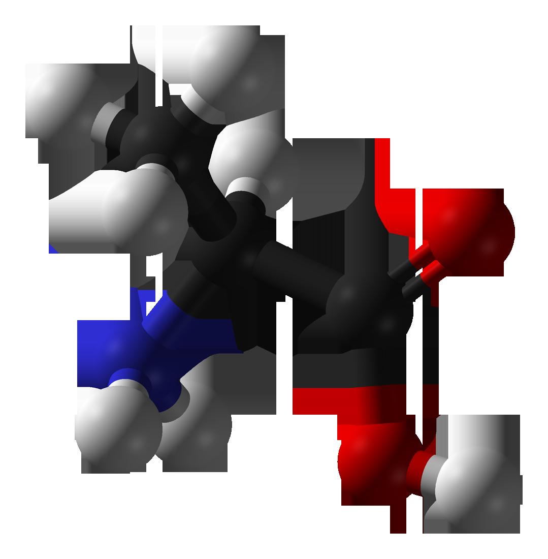 Aminosäure L-Alanin